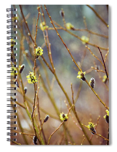 Snowfall On Budding Willows Spiral Notebook