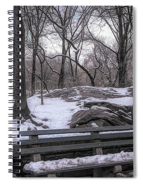Snowy Benches Spiral Notebook by Alison Frank