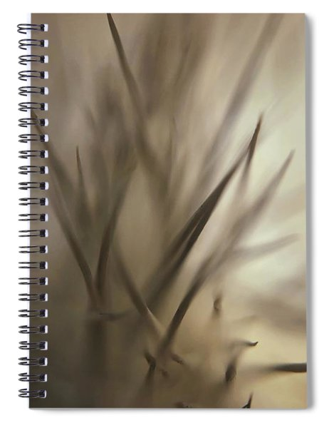 Soft And Spiky Spiral Notebook