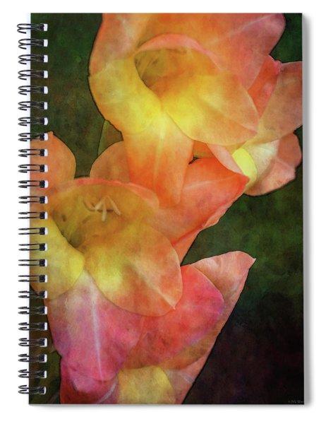 Soft Blush 2975 Idp_2 Spiral Notebook