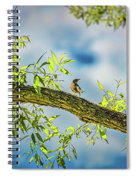 Someone Coming? #i2 Spiral Notebook