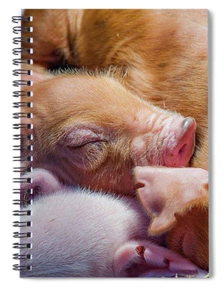 Sound Asleep Spiral Notebook