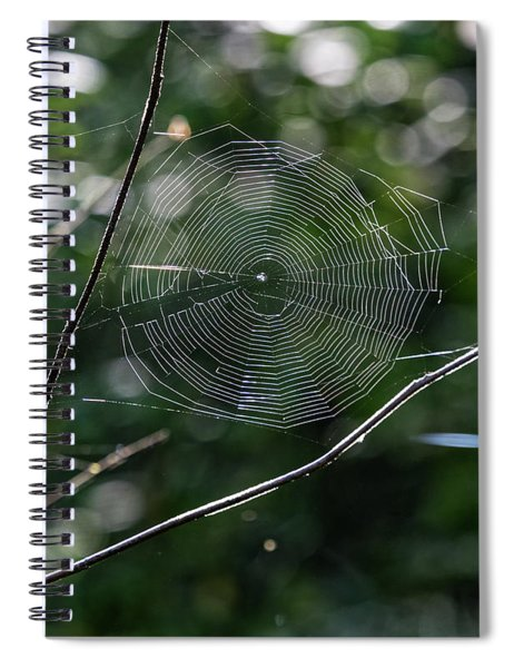 Spider Web Spiral Notebook