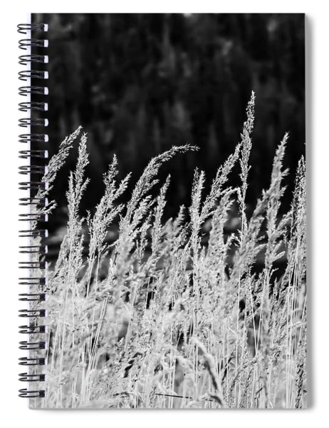 Spikes Spiral Notebook