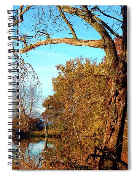Spirit In The Tree Spiral Notebook