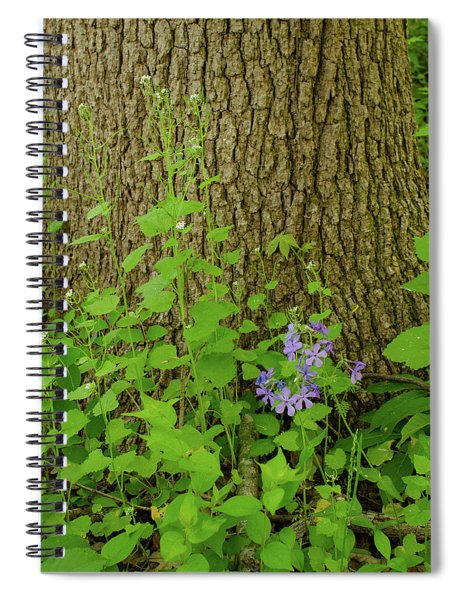 Splash Of Purple Spiral Notebook