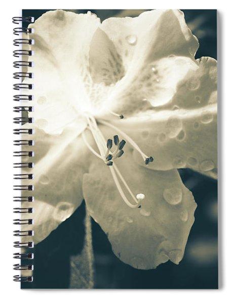 Split Tone White Rhododendron Spiral Notebook