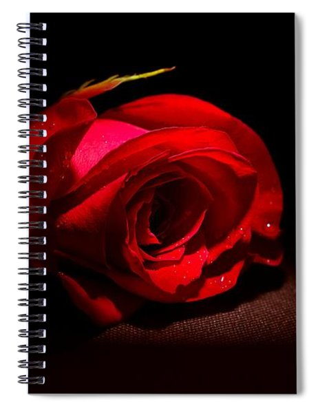 Spotlight Shines On Red Rose Spiral Notebook