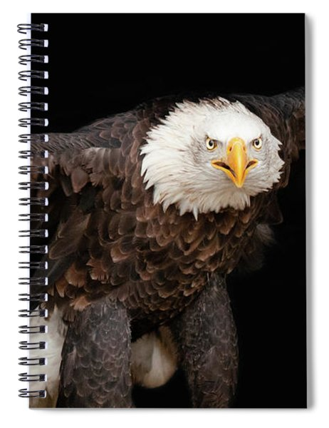 Spread Your Wings And Fly Spiral Notebook