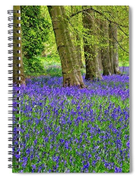 Spring Bluebell Woodland Spiral Notebook