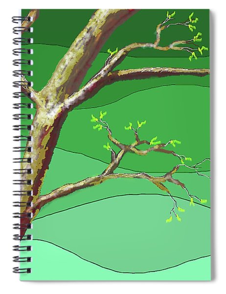 Spring Errupts In Green Spiral Notebook