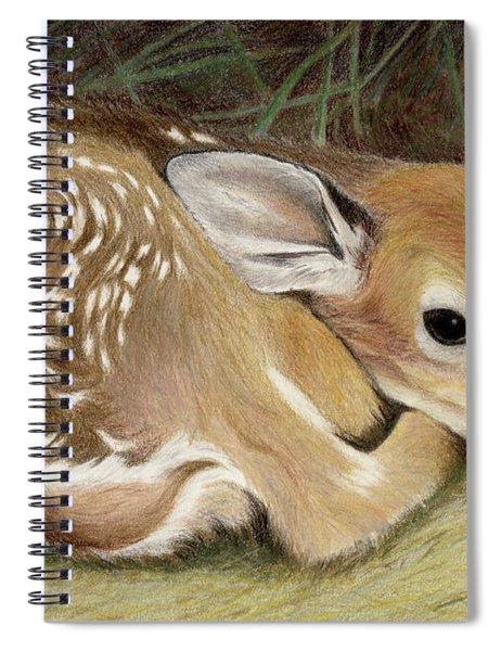 Spring Fawn Spiral Notebook