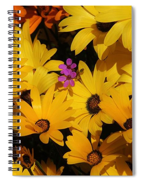 Spring In The Neighborhood Spiral Notebook