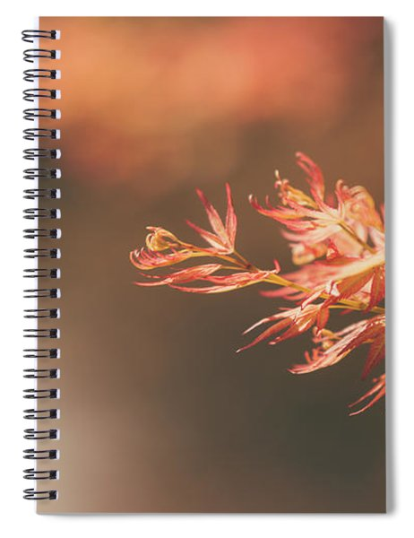 Spring Or Fall Spiral Notebook