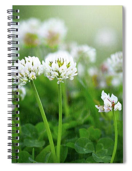 Raindrops On Clover Spiral Notebook