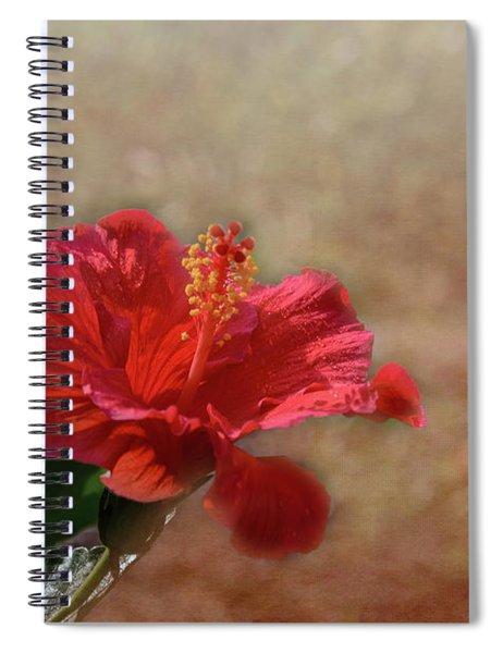 Spring Splendor Spiral Notebook