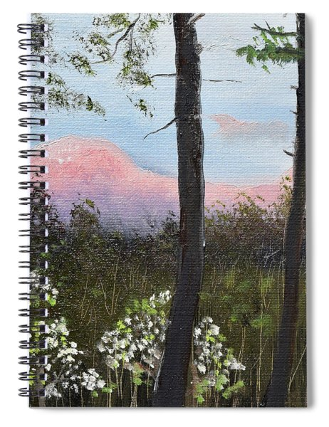 Springtime At Pink Knob In Ellijay Spiral Notebook by Jan Dappen