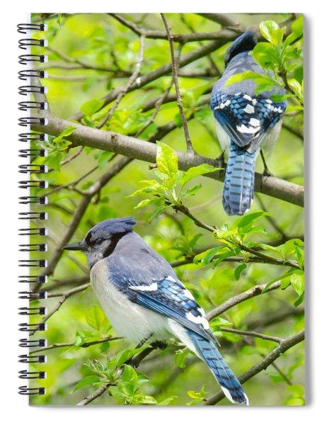 Springtime Pairs Spiral Notebook