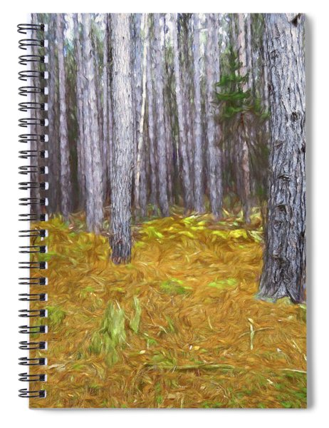 Stand Of Pines And Whitetailed Buck. Spiral Notebook