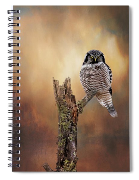 Stare Into My Eyes Spiral Notebook