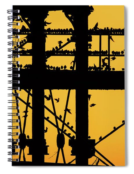 Starlings At Golden Hour On Aberystwyth Pier Spiral Notebook