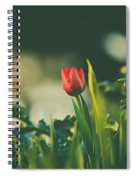Start Of Spring Spiral Notebook