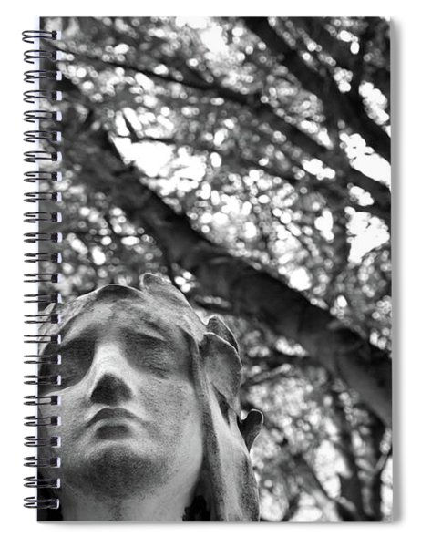 Statue, Contemplating Spiral Notebook by Edward Lee