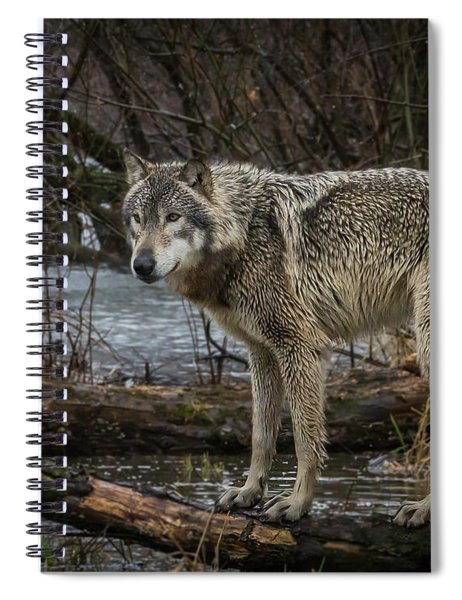 Stay Dry Spiral Notebook