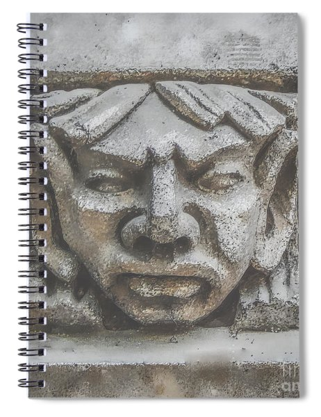 Stone Face Spiral Notebook