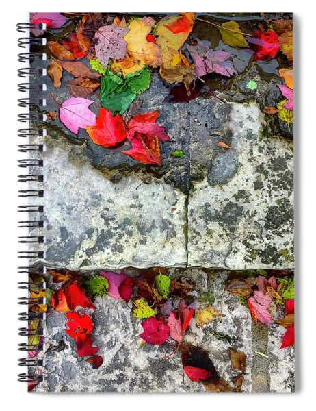 Stone, Steps Showily Seasoned Spiral Notebook