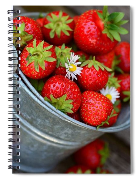 Strawberries And Daisies Spiral Notebook