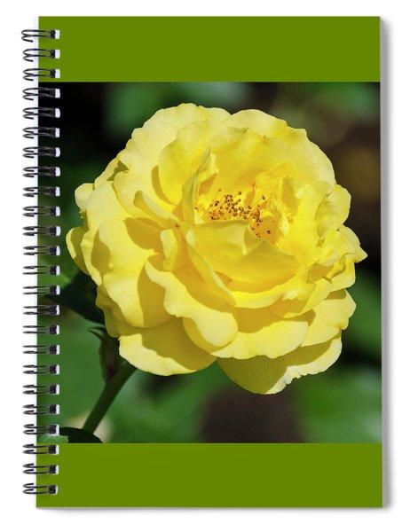Striking In Yellow Spiral Notebook