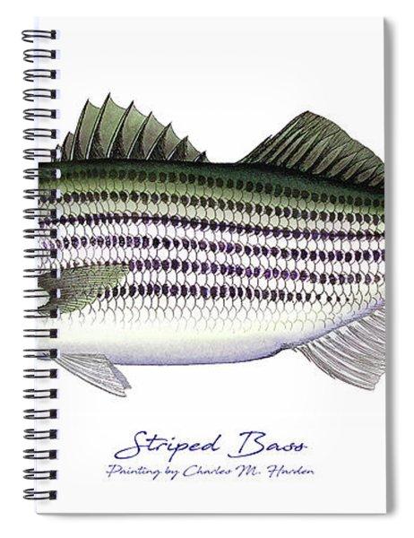Striped Bass Spiral Notebook