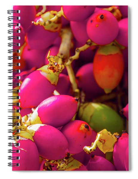 Stuck In The Middle With You Spiral Notebook