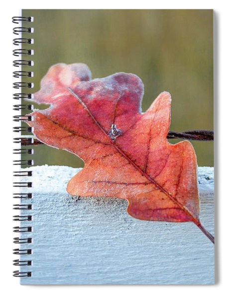 Stuck Leaf Spiral Notebook