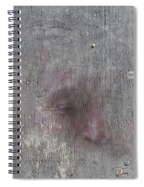 Study Sheet Spiral Notebook