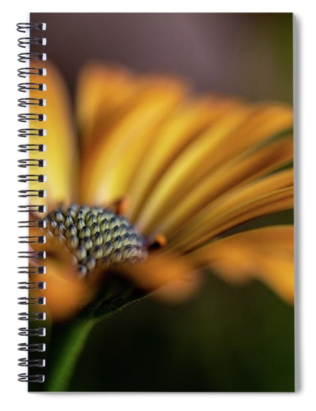 Subdued Spiral Notebook