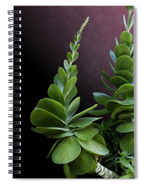 Succulent Spear Spiral Notebook