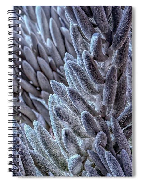 Succulent Texture Spiral Notebook