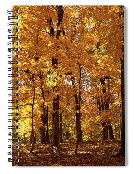 Sugar Maples Spiral Notebook