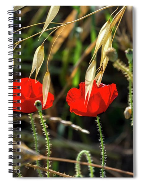 Spiral Notebook featuring the photograph Summer Comes 88 by Arik Baltinester