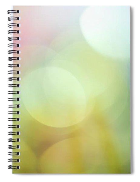 Summer Day Iv Spiral Notebook