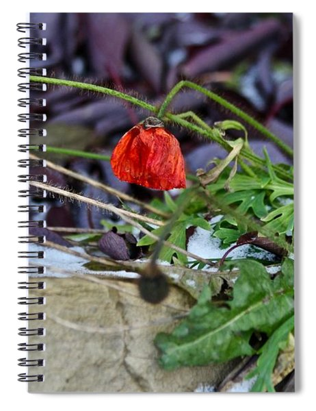 Summer Remnat Spiral Notebook