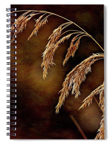 Summer's Passed Spiral Notebook