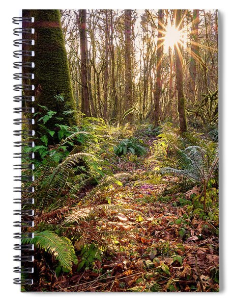 Sun Star In Tryon Creek State Park Spiral Notebook