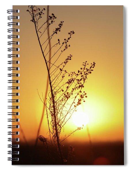 Sunday Spiral Notebook