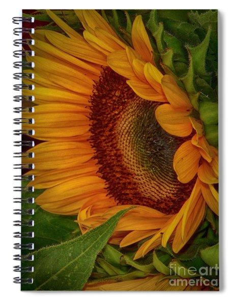 Sunflower Beauty Spiral Notebook