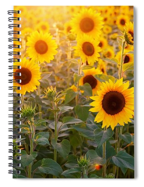 Sunflowers Field Spiral Notebook