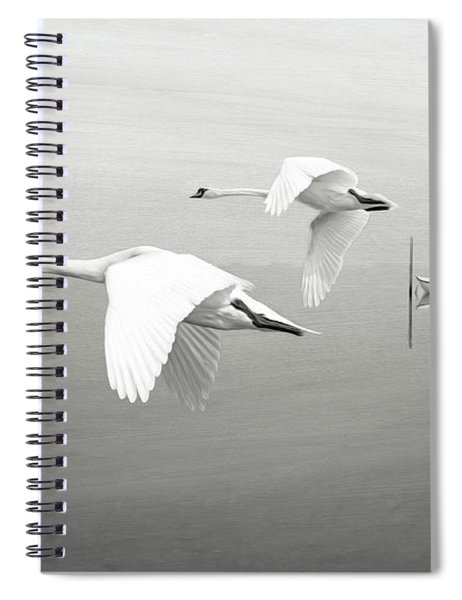 Swans At Sunrise Bw Spiral Notebook