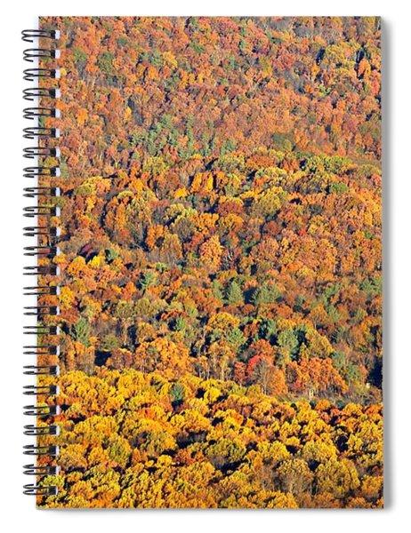 Sweeping Beauty Spiral Notebook